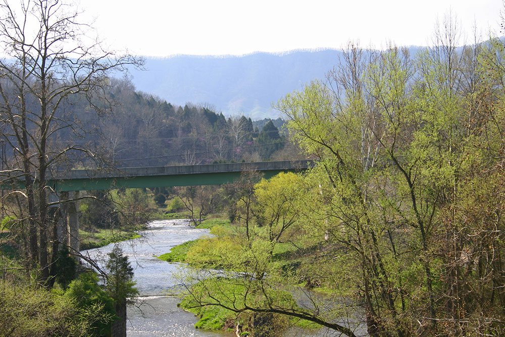 scene_River-Spring