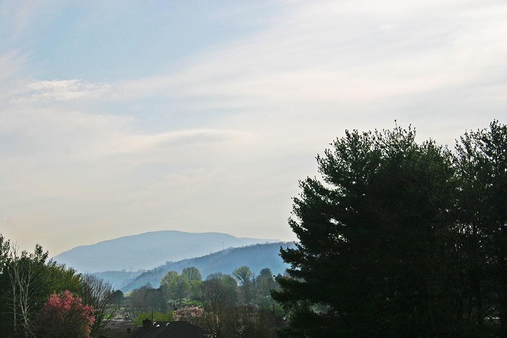 scene_Spring-Mountains