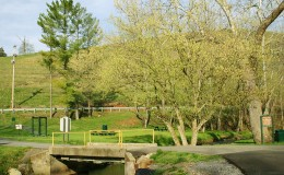 scene_Spring-Park