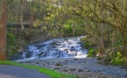 scene_Spring-Waterfall