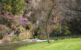 scene_SpringColor_River
